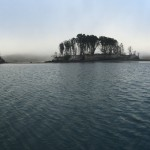 Hog and Piglet Island, Tomales Bay