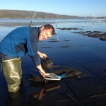 Collin enjoys the sunny morning counting oysters